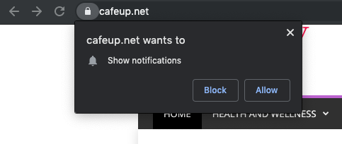 The website shows pop-ups encouraging to allow additional notifications, so the person is convinced to not leave the page